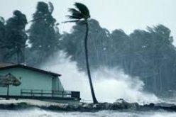 """აშშ-ში ქარიშხალ """"ჰარვის"""" შედეგად დაღუპულთა რიცხვი 44 ადამიანამდე გაიზარდა"""