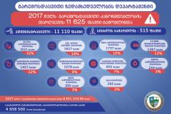 2017 წელს გარემოსდაცვითი კანონმდებლობის დარღვევის 11 625 ფაქტი გამოვლინდა