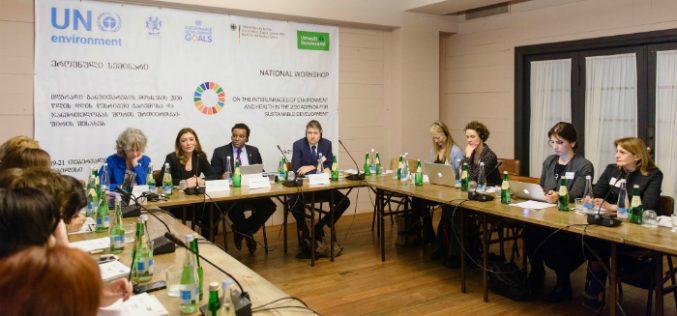 სასტუმრო rooms hotel tbilisi-ში მდგრადი განვითარების მიზნების 2030 წლის დღის წესრიგში გარემოსა და ჯანმრთელობას შორის ურთიერთკავშირის შესახებ იმსჯელეს