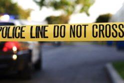 მესტიაში, 23 წლის ლუკა ფალიანის მკვლელობის საქმეზე შსს-მ ერთი ადამიანი დააკავა.