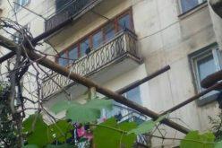 თბილისში, გლდანის მე-5 მიკრორაიონის მე-3 კორპუსში, ერთ-ერთ საცხოვრებელ ბინაში ხანძარი გაჩნდა