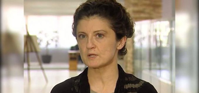 თეა წულუკიანი: გრიგოლ ვაშაძე საპრეზიდენტო სკამისთვის კი არა, სააკაშვილის შეწყალებისთვის იბრძვის