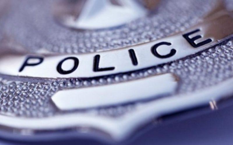 პოლიციამ სოფელ ლამბალოს მკვიდრი არასრულწლოვანი გოგონა თავშესაფარში გადაიყვანა