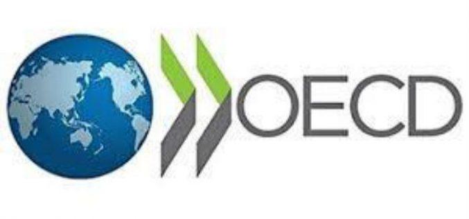 OECD-მ საქართველო მცირე და საშუალო ბიზნესის მხარდაჭერის კუთხით სამოდელო წარმატებულ ქვეყნად დაასახელა