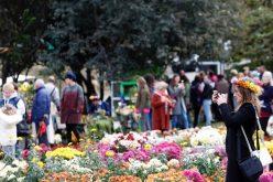 საქართველოს ეროვნულ ბოტანიკურ ბაღში ყვავილების გამოფენა გაიმართა, რომელიც ორდღიანია და 4 ნოემბერსაც გაგრძელდება