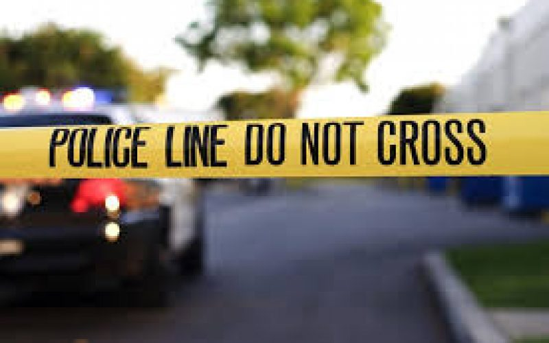 პოლიციამ საფლავზე ბიუსტის მოპარვის მცდელობის ფაქტზე 23 წლის მამაკაცი დააკავა.