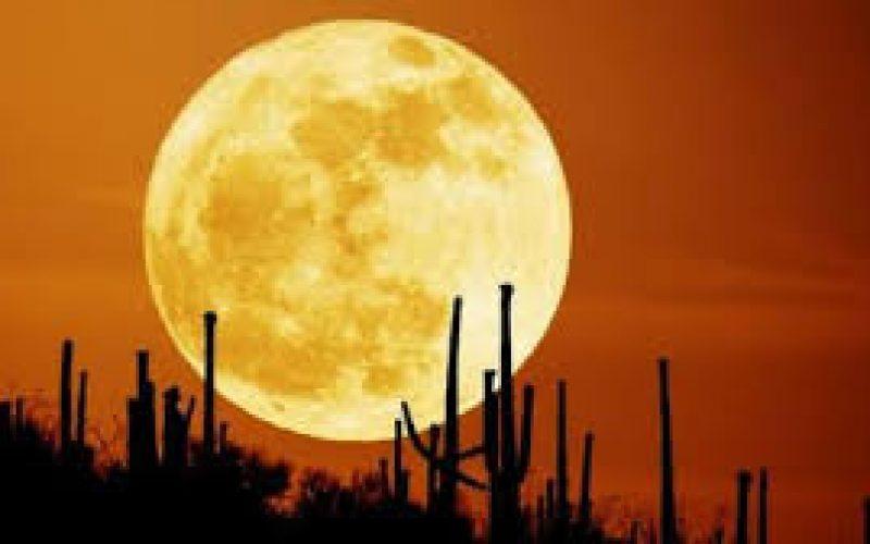 თებერვლის სავსე მთვარე ცას მალე გაანათებს და წლის ყველაზე დიდი სუპერმთვარე იქნება.
