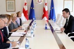 პრემიერ-მინისტრი საერთაშორისო ექსპერტს, მეგი ნიკოლსონს ადამიანის უფლებების დაცვის საკითხებზე ესაუბრა