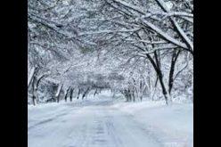23 იანვრიდან 25 იანვრამდე საქართველოში მოსალოდნელია ნალექი, უმეტესად თოვლის სახით