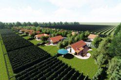 """ყვარელში """"ღვინის სოფელი"""" შენდება – პროექტის საინვესტიციო ღირებულება $3.5 მლნ-ია"""