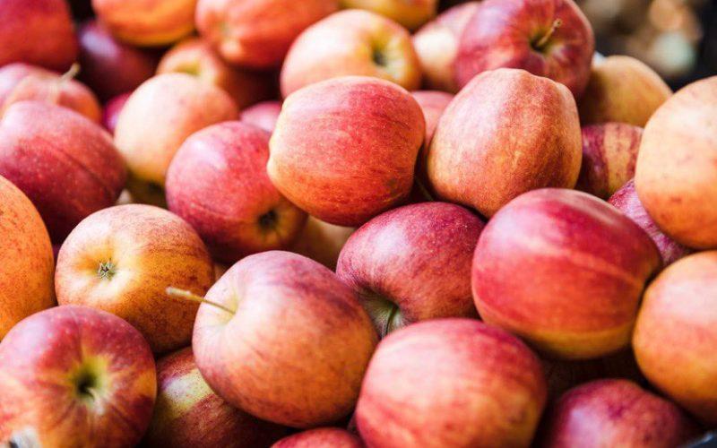 4 ოქტომბრის მონაცემებით, საქართველოდან 1753 ტონა ვაშლია ექსპორტირებული
