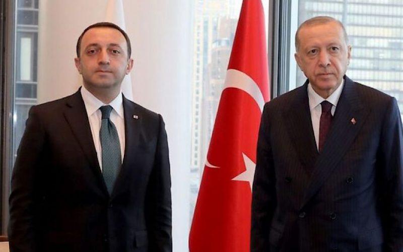 ირაკლი ღარიბაშვილი თურქეთის პრეზიდენტს შეხვდა